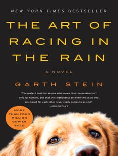 """""""The Art of Racing in the Rain"""" by Garth Stein - I highly recommend this book! I cried like a baby reading this, in public, on numerous planes. It's funny, heartwrenching, and beautifully written! Everyone NEEDS to reed this book I Love Books, Great Books, Books To Read, Amazing Books, It's Amazing, Awesome, Reading Lists, Book Lists, Reading Den"""