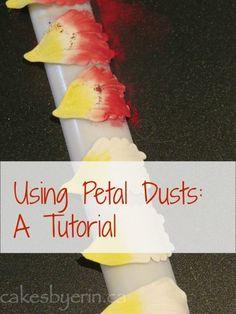 Petal Dust Tutorial - by erinCA @ CakesDecor.com - cake decorating website
