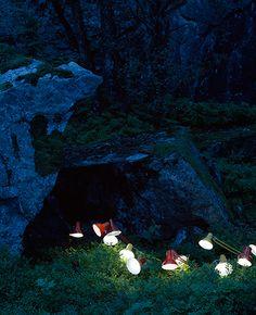 Rune the secret lives of lamps