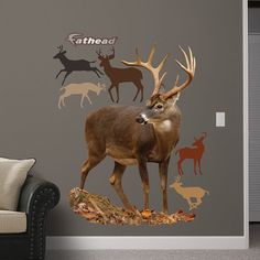Fathead Deer Wall Graphic *** To view further for this item, visit the image link. (Note:Amazon affiliate link)