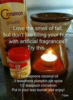 DIY fall scent for home. I tried this in my scentsy warmers.  It didn't work.  I couldn't smell anything. :(