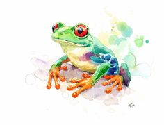 Tree Frog Original Watercolor Painting 8.5 x 11 by CMwatercolors