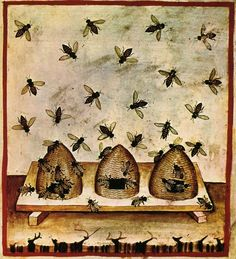 Bee skeps - illustration from Tacuinum Sanitatis, a medieval handbook on health and wellbeing. I Love Bees, Birds And The Bees, Illustrations Harry Potter, Bee Skep, Bee Art, This Is A Book, Save The Bees, Bee Happy, Medieval Art