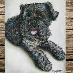Another pet portrait done! How do you commemorate your four-legged friends?