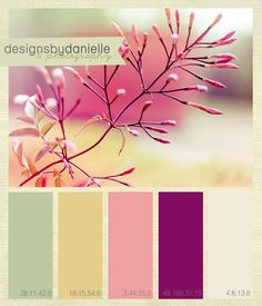 Danielle Hendrickson Design and Photography: Color Palette Inspiration #2