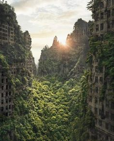 The art of barren, overgrown, devastated or post apocalyptic landscapes and the characters, tech and monsters found within. Apocalypse World, Apocalypse Art, Apocalypse Survival, Apocalypse Landscape, Dystopian Art, Art Science Fiction, Post Apocalyptic City, Apocalypse Aesthetic, Abandoned Cities