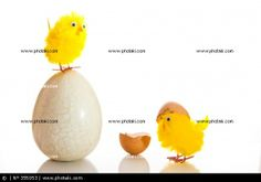 http://www.photaki.com/picture-easter-eggs-and-chickens_355053.htm
