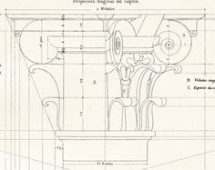 Composite Capital Vignola Architectural Drawing Steel Engraving