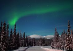 Finnish Lapland, Aurora Borealis by Visit Finland Lapland Northern Lights, See The Northern Lights, Aurora Borealis, Lapland Finland, Best Ski Resorts, Destinations, Les Continents, Excursion, Holiday Pictures