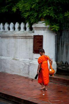 Monk. www.urbanrambles.com