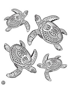 Zentangle turtle adult antistress coloring page Adult