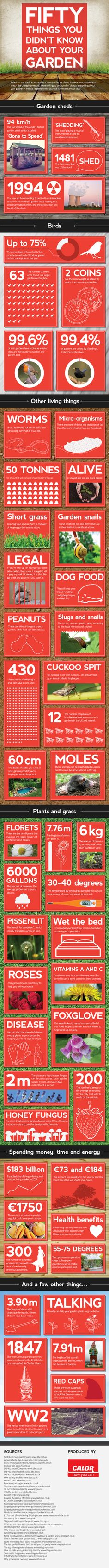 50 Things You Didn't Know About Your Garden – Infographic