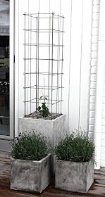 Concrete planters elevate plantings and anchor the landscape - trellis made from stainless steel reinforcement mesh Concrete Planters, Garden Planters, Garden Trellis, Hops Trellis, Wire Trellis, Garden Projects, Garden Inspiration, Container Gardening, Outdoor Gardens