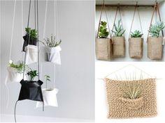 decorar con plantas colgantes embolsadas