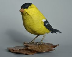 Hand Carved American Goldfinch