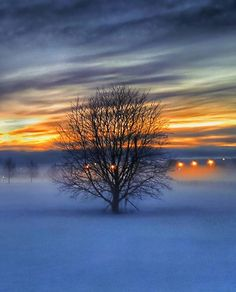 Reposting @kaikela: Light fog on a cold morning. - #fog #cold #morning #landscapelovers #landscape #maisema #oulu #visitfinland #sunrise_sunsets_aroundworld #auringonnousu #heinäpää #luontokuva #tree_magic #tree_captures #sunrise #ig_finland #ig_scandinavia #mtvsaa #pakkanen #sumu #picoftheday #photoofday #finland_bestsunset #skylovers #skyporn