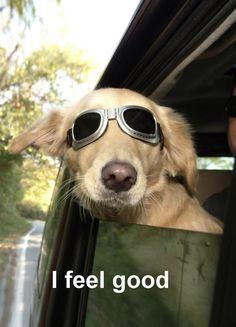 I feel good =}