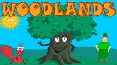 Learn About the Needs of the Tree; Woodland Wildlife - Interesting & Edu...
