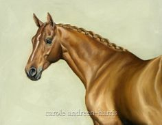Diego - Horse painting by Carole Andreen-Harris