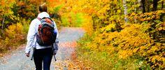 randonnee-pedestre-lieu-ou-marcher-mauricie Plein Air, Vermont, Sling Backpack, Backpacks, Paradis, Travel, Nature, Pathways, Drill Bit