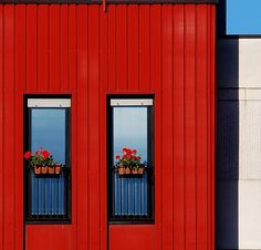 Red Building and Red Flowers: