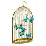 butterfly home at Debenhams.com
