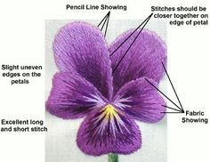 3 of 6 On-Line Hand Embroidery Classes with Tanja Berlin.  Beginners Needle Painting On-line Class  Purple Pansy   Class runs from Friday 18th of September 2015 until Friday 6th of November 2015.  3 of 5 Registration open from 1st of July until the 21st of August 2015.