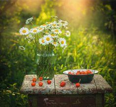 Photographer\s photo Инна Сухова - ***