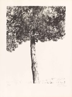 Marlborough Gallery — The Estate of Avigdor Arikha Graphics Artwork