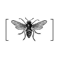we love this manchester worker bee merchandise tattoos pinterest we love and love this. Black Bedroom Furniture Sets. Home Design Ideas