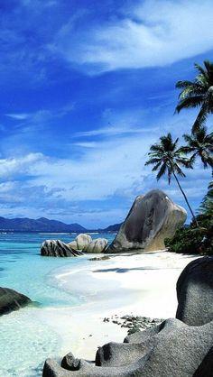 Plage paradisiaque au bord de la mer des Caraïbes.