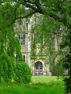 Wakehurst Place - West Sussex, this is an amazing gorgeous place to visit! gorgeous mansion sits on acres of parkland, variety of trees & water. visited in Nov & visited Christmas fair.