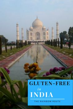 Eating Gluten-Free in India - The Rainbow Route Gluten Free Diet, Dairy Free, India Travel Guide, Free In, How To Eat Paleo, European Travel, Around The Worlds, Indian, Travel Guides