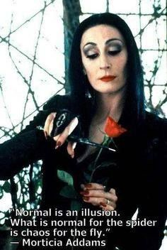"""Normal is an illusion. What is normal for the spider is chaos for the fly"" - Morticia Addams"