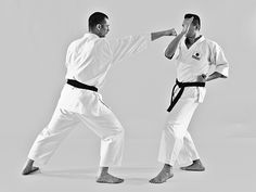 Discover well over 1000 Karate videos on Kihon, Kata, Kumite, Applications and unique and effective training methods at The Digi Dojo. Karate Video, Dojo, Martial Arts, Combat Sport, Martial Art