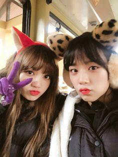 BLACKPINK Jisoo CH+ Update