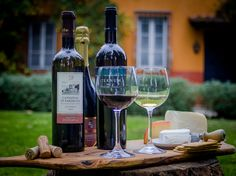 Wine tasting Rome  Fantastic wine tasting in a beautiful villa 20 minutes from Rome city centre.