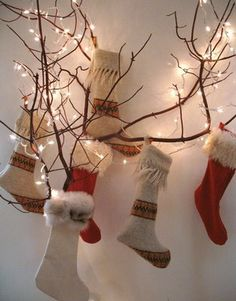 stockings and branches