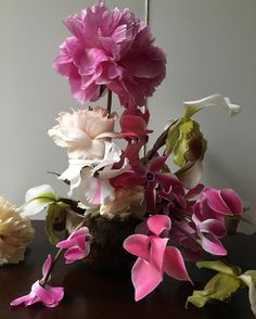 fjura Anna Love, Love Simon, Florals, Shells, Birds, Instagram Posts, Plants, Decor, Flower Backgrounds