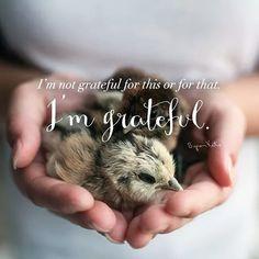 I am grateful.  #gratitude #grateful