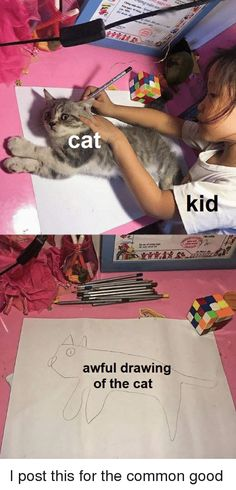 Kid Drawing Cat Meme