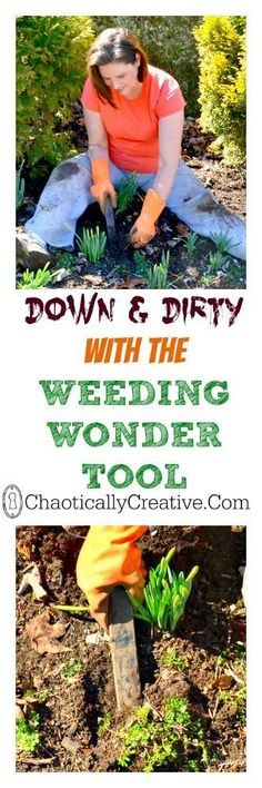 Down and Dirty - Chaotically Creative