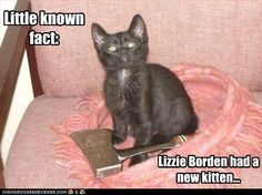 Lizzie Bordens Kitty Meme | Slapcaption.com