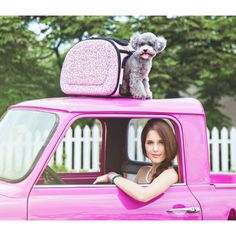 New Collapsible Traveling Shoulder Carrier-Baroque Best Travel Stroller, Cat Stroller, Cat Carrier, Travel System, Pet Travel, Pink Cat, Poodle, Baroque, Pet Supplies