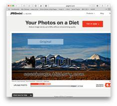 즐겨찾기 추가해야 할 유용한 사이트 추천 25개(모르면 손해, 알면 개꿀 사이트) Your Photos, Innovation, The Originals, Image