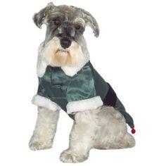 Olha o duende! <3 Fantasia Duende Dear Dog #petmeupet #deardog #natal #fantasia #duende
