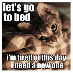 Let's go to bed... I'm tired of this day. I need a new one!
