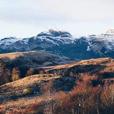 A west coast winter  Ive spent Christmas in an offline slumber of books marzipan & countryside wanders  how was yours?  Thisll be the last from me in 2017 so thank you for all your support  heres to more #storiesfromscotland in the New Year! See more from Scotland at http://laretour.com