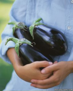 How to Grow Eggplant by marthastewart #Eggplant #Vegetable_Growing_Guide #marthastewart
