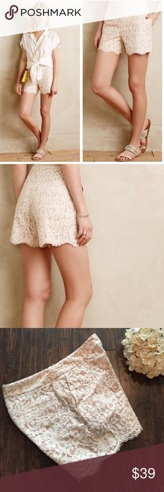 """•Cartonnier• Anthropologie Scalloped Lace Shorts Cartonnier Anthropologie Scalloped Lacework Shorts in White. In Excellent Used Condition.  Cotton-nylon lace; cotton lining  Scalloped hemline  Side pockets, faux back pockets  Side zip  Regular: 4.5"""" inseam  When Laying Flat: Waist Measures Approximately 15"""" Across. Anthropologie Shorts"""